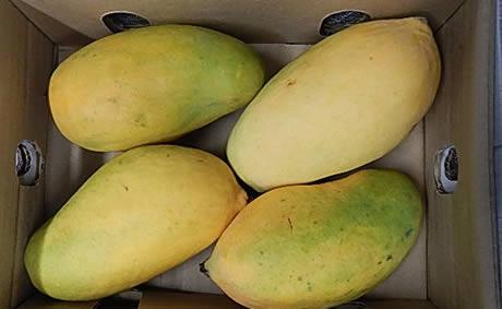 Mango kortingscode september 2018