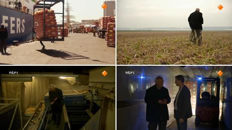 De Wilde Keuken : Hollandse uien centraal in tv programma de wilde keuken