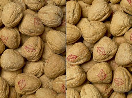 kilo walnoten prijs
