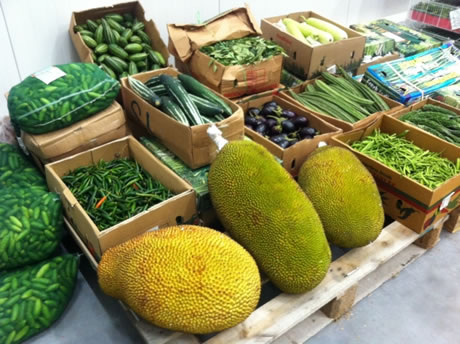 production and supply of exotic vegetables We offer a year round supply of vegetables from both our spanish and british growers bases we have also developed a range of exotic vegetables  fesa uk ltd clay.