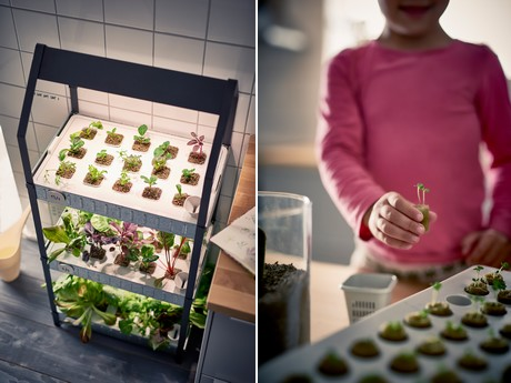 Ikea Joins The Hydroponic Hype