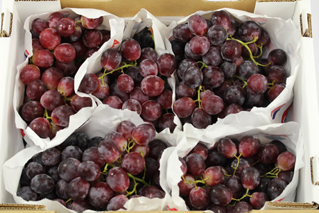 Quot Much Fewer Chilean Grapes To Europe Quot