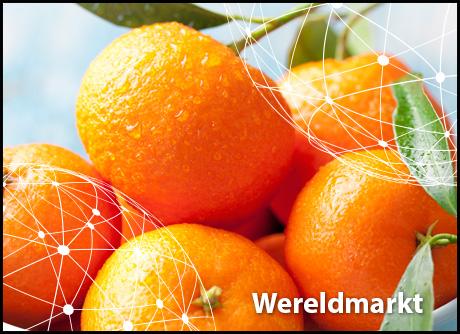 unterschied clementinen und mandarinen