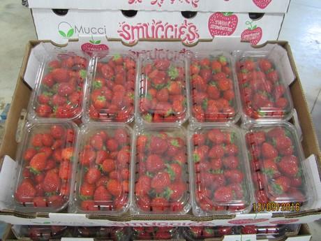 boem berry farms