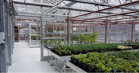 The Facility Consists Of Various Constructions And A Venlo Greenhouse. All  In All, 48 Propagation Trays, A Rain Water Silo And A Foil Greenhouse Were  ...