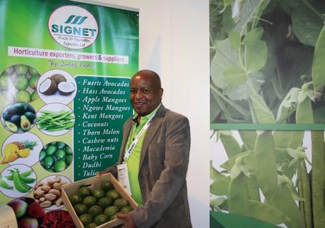 Grown from 15 to 500 Kenyan hectares avocados