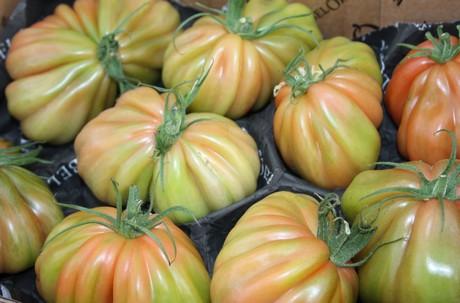 tomaat2.jpg
