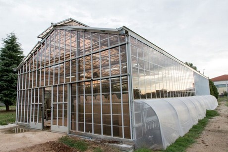 In Greece The Gl Has Already Been Tested On A Small Scale 100 M2 Greenhouse Many Growers Feared That Letting Through Less Light Would