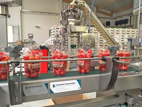 Complete packaging lines for the entire snack vegetable segment