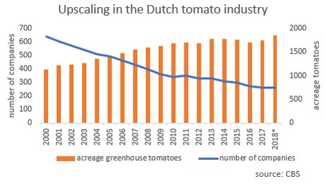 OVERVIEW GLOBAL TOMATO MARKET