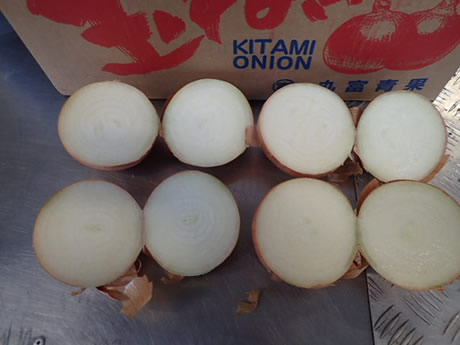The only importer of Japanese onions in Europe