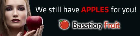 basstion2
